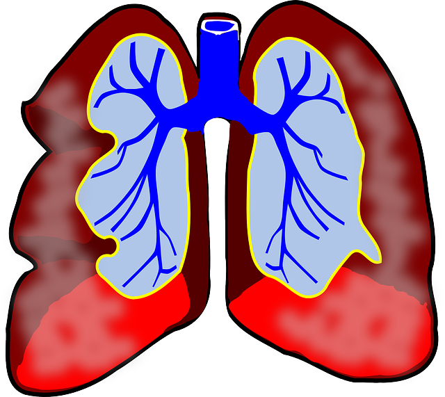 Solid Asthma Information That Is Highly Important to Know