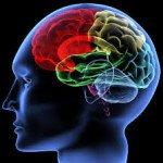 Alzheimer's Disease Effect, Know Better