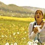 Pollen Allergies, Have A Better Understanding