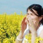 Pollen Allergies, Comprehend Better