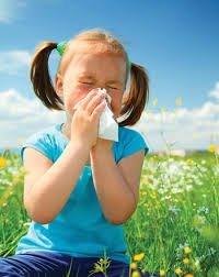 Cure Seasonal Allergies Today