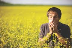 Understand The Causes Of Allergies Today