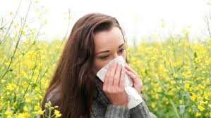 Understand The Difference Between Allergies And Cold