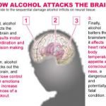 What Are Some Dangers Of Alcohol Abuse In The Heart And Brain?