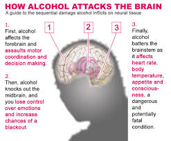 Understand The Effects Of Alcohol Abuse In The Heart Today