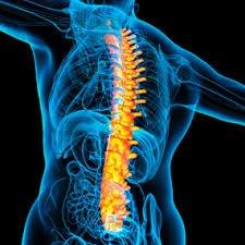 Chronic Back Pain Arthritis, Understand Better