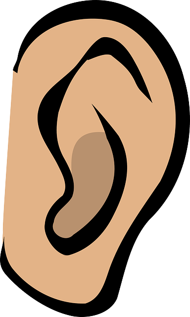 Things That Will Help With Your Tinnitus Diagnosis