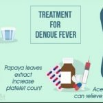 How Long Does It Take To Cure Dengue?