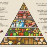 What Is The Food Pyramid?
