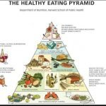 What Is The Healthy Food Pyramid?
